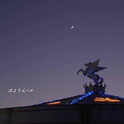 月を見るペガサス.jpg