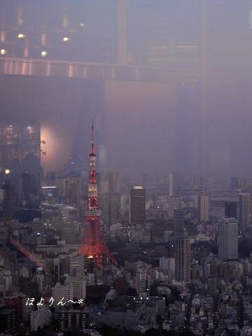 灯りの中の東京タワー.jpg