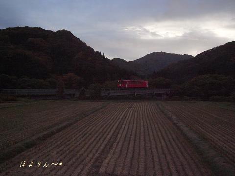 刈田の向こう側を.jpg