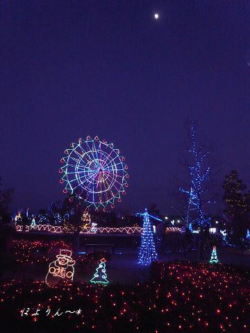 月夜のメリークリスマス♪.jpg
