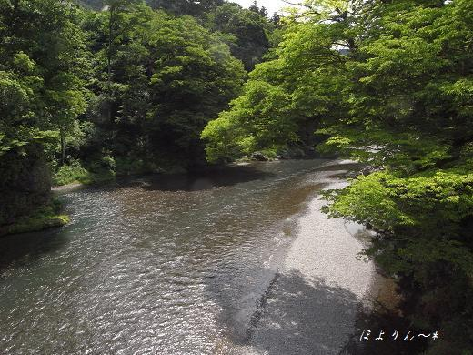 梅雨の晴れ間の川景色.jpg