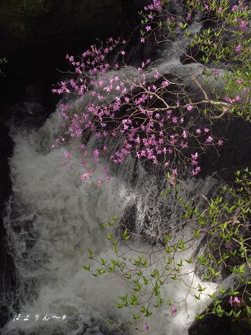 水の季節.jpg