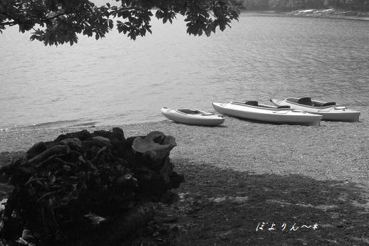 湖畔の夏休み♪.jpg
