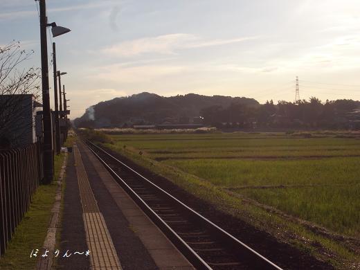 秋の駅.jpg