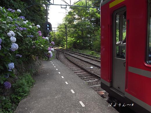 紫陽花咲く駅.jpg