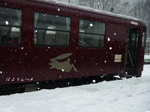 雪うさぎ♪.jpg