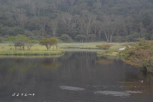 静かな湖畔.jpg